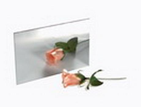 Gương phẳng NSD002