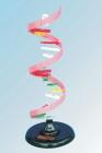 Mô hình cấu trúc phân tử ARN