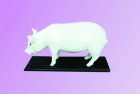 Mô hình cấu tạo con Lợn